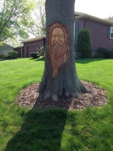 arbre-portait