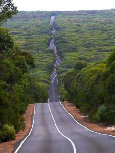 kangourou-road