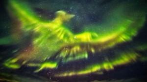 phenix-aurore-boreale-0