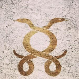 serpent-cosmique